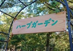 東京 代々木公園の。。。